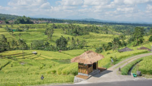 20170523_135056_Jatiluwih-Rice-Terraces